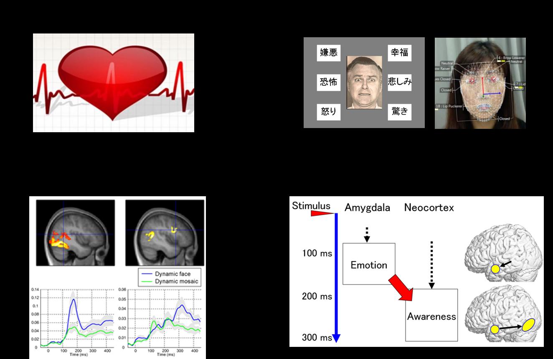心を科学的に研究します. いろいろな手法で心理実験します. いろいろな計測手法を用いて脳活動の 時空間ダイナミクスを解明します. 無意識の感情の心理神経モデルを 解明することを目指しています.